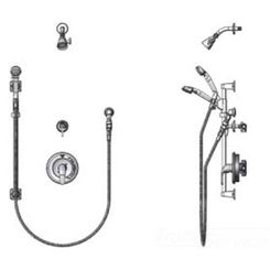 Click here to see T&S Brass B-3306-VB T&S Brass B-3306-VB Pressure-Balancing Shower Package