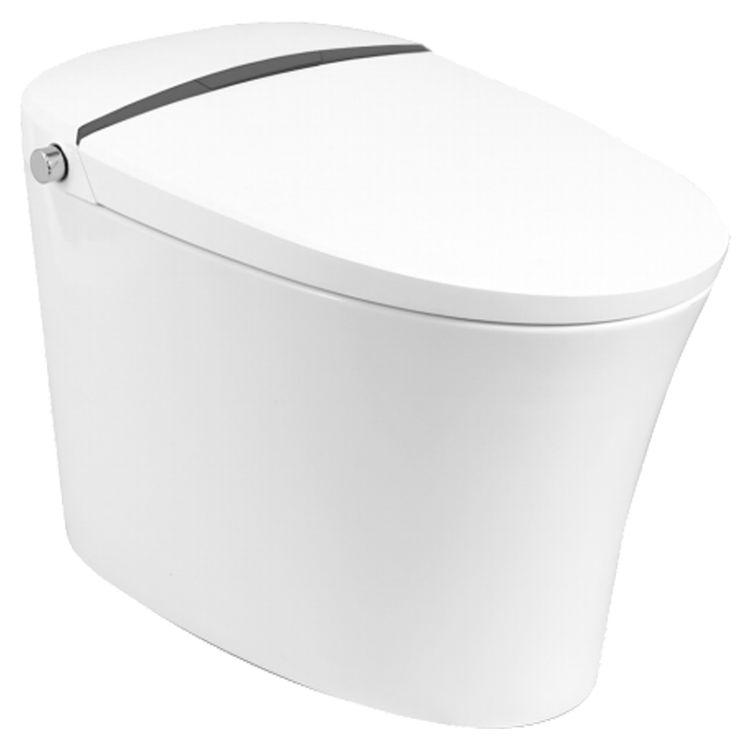 Toilets With Built In Bidets Bidet Toilets Bidet Toilet Combos