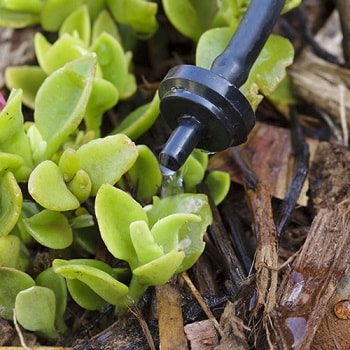 emitters are an important drip irrigation part
