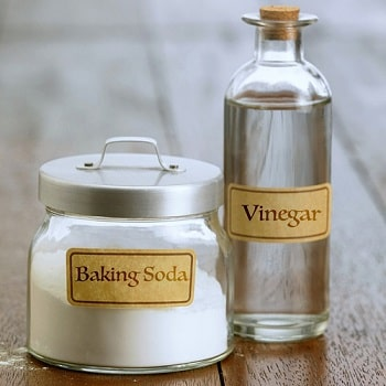vinegar and baking soda are great for cleaning disposals