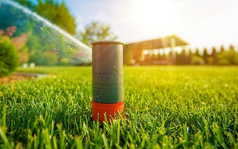 watering at the right time yields greener grass