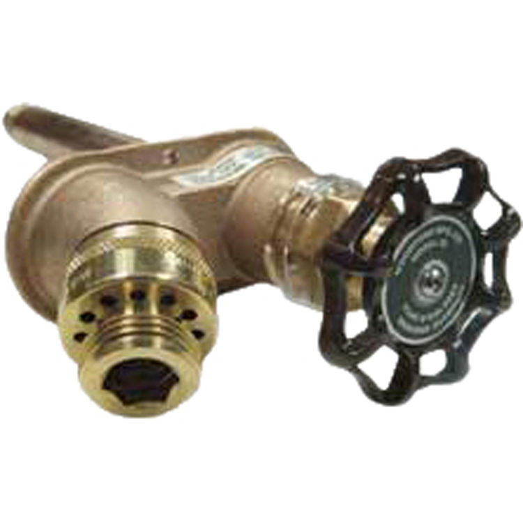 Woodford 25CP-12 Anti-Siphon Residential Wall Faucet | PlumbersStock